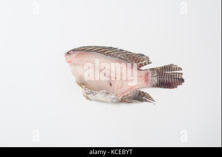 Les tilapias (tilapia nilotica) fishbone sur fond blanc en studio. Les aliments biologiques et le concept de l'alimentation Banque D'Images