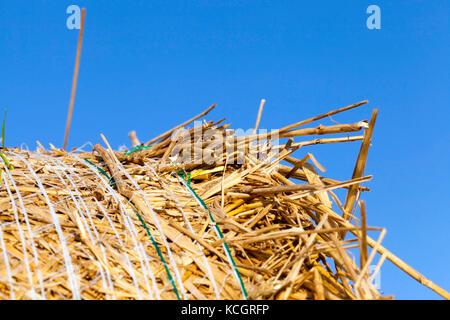 Une botte de paille contre un ciel bleu d'été en campagne. Banque D'Images