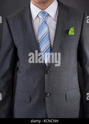 Businessman with a fresh vert feuille dans sa poche Banque D'Images