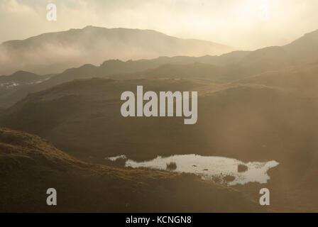 L'aube sur Loughrigg, à faible altitude, les petits nuages tarn en premier plan, près de Ambleside, Lake District Banque D'Images