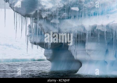 Gros glaçons pendent à un dégagement à la masse des icebergs dans l'eau près de pleneau island, antarctic peninsula Banque D'Images
