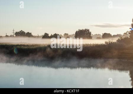 Champ d'herbe couverte de brouillard près du lac. Réflexions de rêve sur une surface d'étangs. Banque D'Images