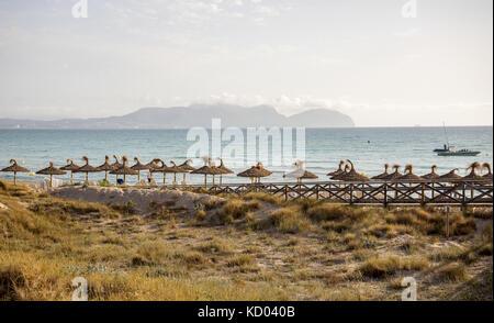Vue de la baie d'alcudia de Can Picafort tôt le matin, Majorque Banque D'Images