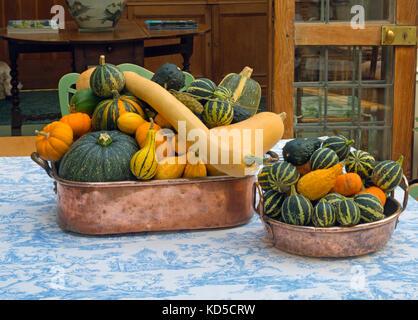 Courges mixte sur l'affichage fruits d'automne du jardin Banque D'Images
