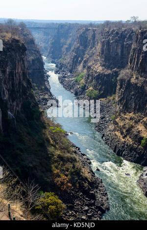 Rafting sur le fleuve Zambèze, le Zimbabwe, l'Afrique du Sud Banque D'Images