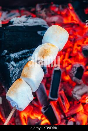 Ensemble de guimauves grillées sucré sur rouge feu flammes. marshmallow en brochettes rôti sur fusains Banque D'Images
