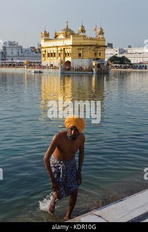 Homme sikh baignade à la sri Harmandir Sahib ou temple d'or d'Amritsar, Inde, l'État du Pendjab Banque D'Images