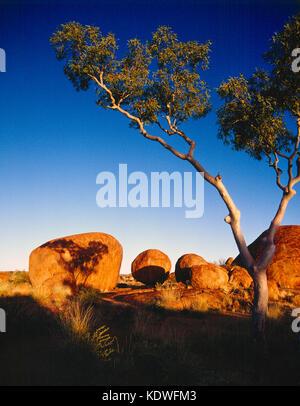 L'Australie. Territoire du Nord. Tennant Creek. Devils Marbles formations rocheuses. Banque D'Images