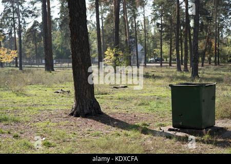 Poubelle verte dans le parc Banque D'Images