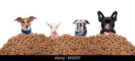 Grande ligne ou groupe de chiens affamés derrière un gros tas de nourriture , prêt à manger le déjeuner , isolé Banque D'Images