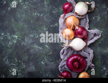 Différents type d'oignons sur fond vert. Banque D'Images