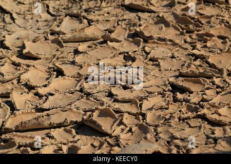 Close-up de boue montrant cracked earth et l'épluchage de la boue pendant la sécheresse au Portugal en raison du Banque D'Images