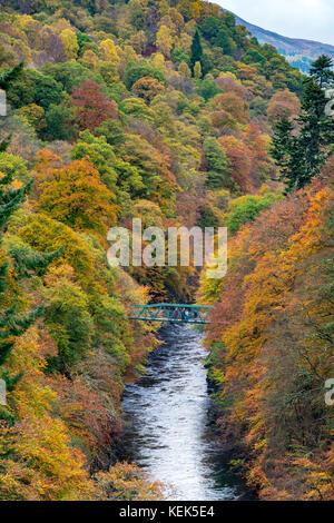 Le Perthshire, Écosse, Royaume-Uni. 21 oct, 2017. uk. météo couleurs d'automne spectaculaire en bois naturel sur Banque D'Images