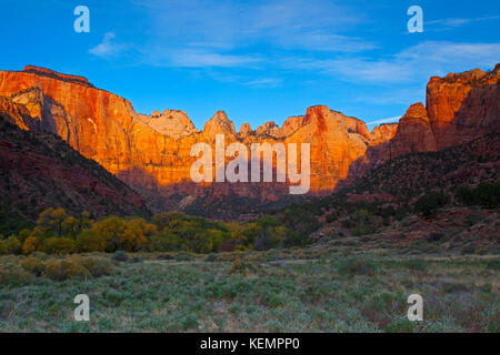 Temple et tours de la Vierge à l'aube, Zion National Park, Utah, USA Banque D'Images