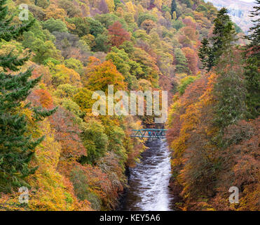 Couleurs d'automne spectaculaire en bois naturel sur les rives de la rivière Garry historique au col de Killiecrankie près de Pitlochry.