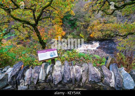 Couleurs d'automne spectaculaire en bois naturel sur les rives de la rivière Garry historique au col de Killiecrankie Banque D'Images