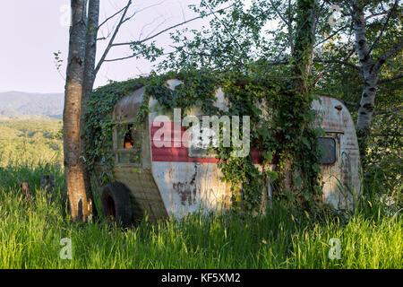 Vintage Travel Trailer Tour-A-Home, le repos sous un bosquet d'aulnes, montre de nombreuses années d'utilisation, Banque D'Images