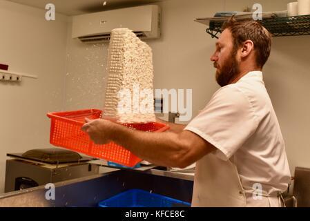 Fromagers jesse johnson part tourner le fromage en usine à door county creamery dans le comté de porte communauté Banque D'Images
