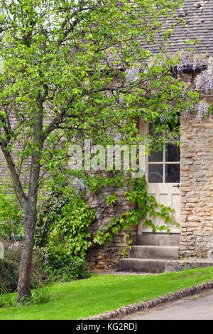 Des portes dans une vieille maison en pierre traditionnelle, cotswolds violet sous la glycine en fleurs . Banque D'Images