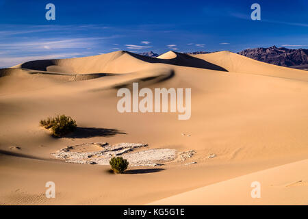 Les usa, Californie, Death Valley National Park, Stovepipe Wells, mesquite flat dunes de sable vers Grapevine Mountains
