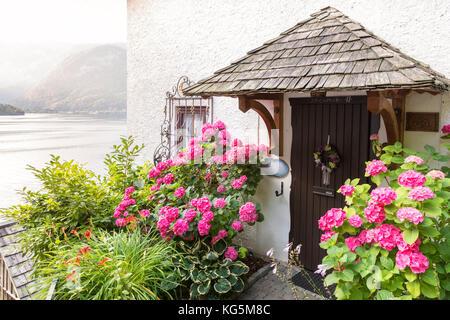 Détail sur l'entrée d'une maison florissante dans le village de Hallstatt, Autriche supérieure, région du Salzkammergut, Banque D'Images