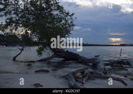 Guardalavaca est situé sur la côte nord de Cuba. Les plages de Guardalavaca comprennent la plage de Guardalavaca, Banque D'Images