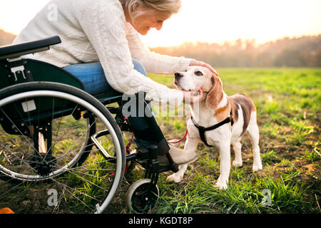 A senior woman in wheelchair with dog in automne nature.