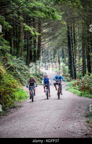 Cornwall Cardinham Woods - vélo de montagne équitation le long d'une voie ferrée à Cardinham Woods à Cornwall. Banque D'Images