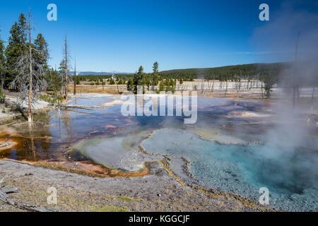 Le printemps le long de firehole firehole lake drive dans le parc national de Yellowstone, Wyoming Banque D'Images