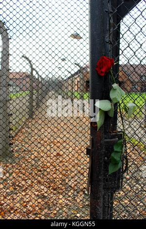 Auschwitz II-Birkenau est un mémorial pour tous ceux qui sont morts dans des camps de concentration aux mains des Banque D'Images