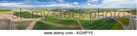 Vue panoramique aérienne de champs circulaires de cultures dans le fleuve Rio Grande Valley de Californie près de Banque D'Images