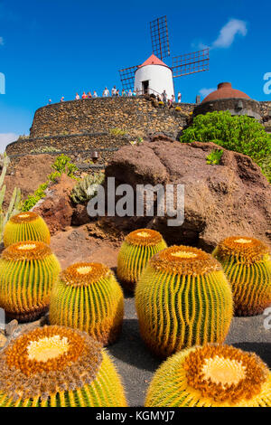 Jardin de cactus. jardin de cactus conçu par Cesar Manrique, risco de las Nieves, gamme guatiza. île de Lanzarote, Banque D'Images