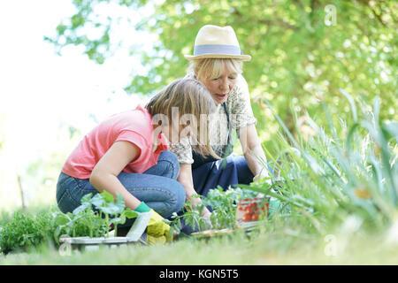 Grand-mère et petite-fille gardening together Banque D'Images