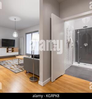 Appartement au design neuf avec salon spacieux et salle de bain élégante Banque D'Images