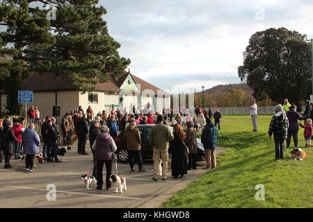 Les protestataires de Conwy, Pays de Galles, Conseil de Conwy 18 Novembre, 2017. Les protestataires ne sont pas Banque D'Images