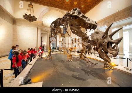 Les enfants visitent le Musée d'Histoire Naturelle de Los Angeles, CA Banque D'Images