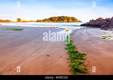 Tôt le matin sur la plage de Mount Maunganui, Bay of Plenty, Nouvelle-Zélande.dit être la meilleure plage en Nouvelle Banque D'Images
