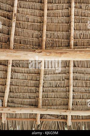 Close-up d'un toit de chaume, plafond, détail, Zanzibar, l'île de Unguja, Tanzanie. Banque D'Images