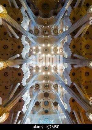 Barcelone, Espagne - 11 Nov 2016: plafond spectaculaire à l'intérieur de la Sagrada Familia, la cathédrale de Barcelone. Banque D'Images