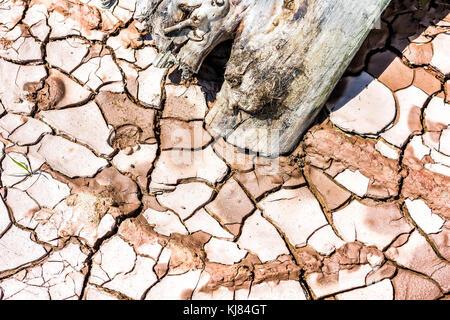 Gros plan macro de sol séché rouge lit avec fissures, de boue, d'argile en bois rond motif montrant et la texture Banque D'Images