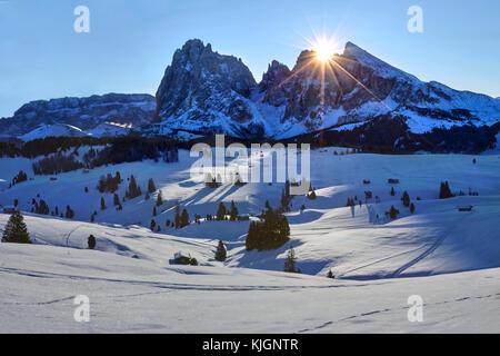 Lever de soleil sur l'hiver Alpe di Siusi avec vue sur Sassolungo et Sassopiatto, Dolomites, Italie Banque D'Images