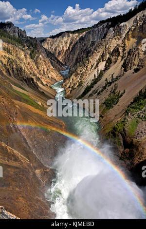 Wy02648-00...wyoming - vue de la rivière Yellowstone au bord de l'upper falls vue dans la région du canyon du parc Banque D'Images