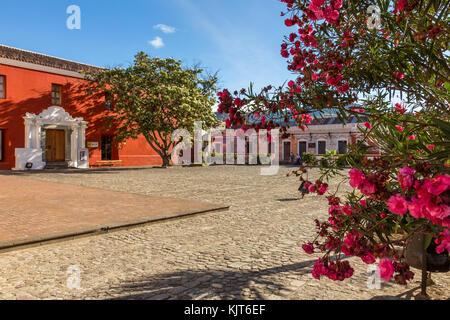 Convento de la Compania de Jesus   antigua   Guatemala Banque D'Images