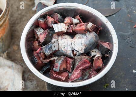 Nungwe, Zanzibar, Tanzanie; les pêcheurs découper de petits poissons de leurs prises pour les vendre au marché. Banque D'Images