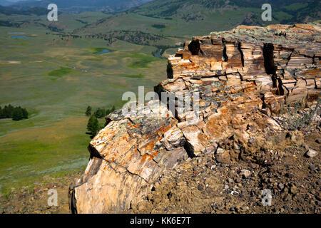 Wy02682-00...wyoming - une énorme côte pétrifié vue redwood tree sur le sentier alors que plus d'arbres pétrifiés à la vallée lamar dans yellowstone n