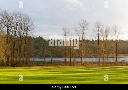 Dans la région de Deer Lake Deer Lake Park à la fin de l'automne, Burnaby, Vancouver, Colombie-Britannique, Canada Banque D'Images