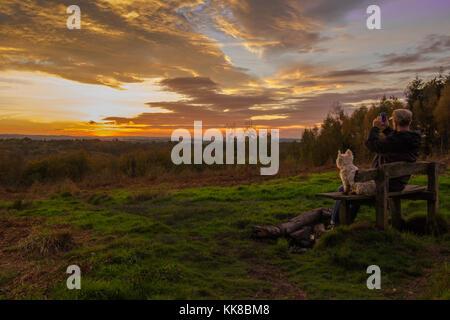 Tunbridge Wells kent forêt hargate; l'homme avec bouchon sur assis sur un banc avec westie chien à la recherche de l'autre côté de la bruyère et fougère valley regardant le coucher du soleil