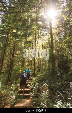 Sentier menant à la point le plus dans les 48 Etats, le cap alava, Olympic National Park, Washington, USA Banque D'Images