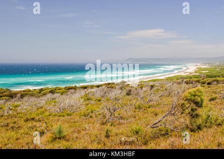 Les plages dans le parc national de Freycinet est un endroit populaire pour la pêche et le surf - Coles Bay, Tasmanie, Australie