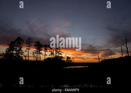 La fin de l'automne coucher de soleil sur les marais à chincoteague National Wildlife Refuge. Banque D'Images
